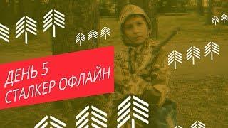 видео IT-лето с ТГАСУ!