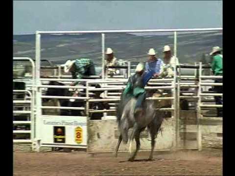 Wyoming Rodeo Round-Up