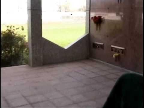 BERNIE MAC Gravesite - YouTube