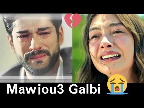 Najwa Farouk - Mawjou3 Galbi ( Kënga Arabe- Galbi (SHQIP) Dashuri e Pa Harruarë )