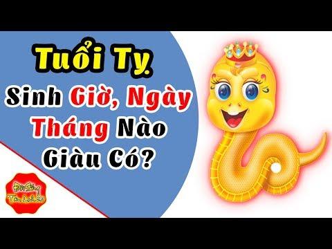 Tuổi Tỵ Sinh Giờ, Ngày, Tháng, Năm Nào Thì Giàu Sang Phú Quý, Tiền Tỷ Trong Tay