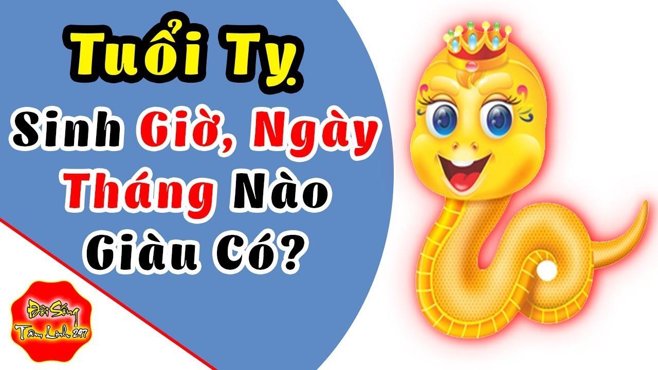Tuổi Tỵ Sinh Giờ, Ngày, Tháng, Năm Nào Thì Giàu Sang Phú Quý, Tiền Tỷ Trong Tay | Khái quát những nội dung nói về thoi trang thang 5 nam 2013 chi tiết