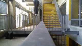 Parkour & Freerunning - Michaela Stránská 2015