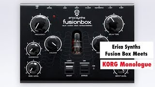 Erica Synths Fusion Box Meets KORG Monologue Synthesizer - Analog Gear Jam