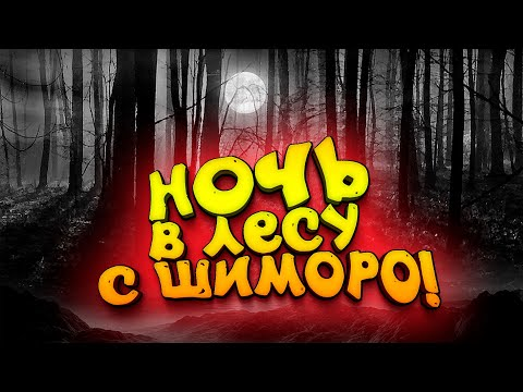НОЧЬ В ЛЕСУ С ШИМОРО! - СЫНОК И КАМЕРА!