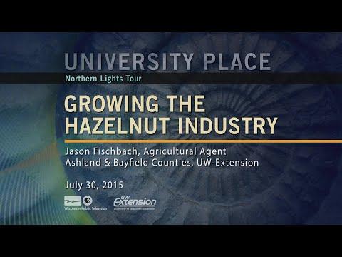 WPT University Place: Growing the Hazelnut Industry