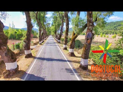 Flying inside the most beautiful road of Alentejo N246-1 - 4K Ultra HD
