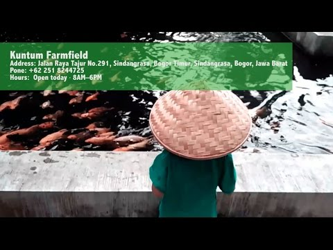 Kuntum Farmfield - Wisata Edukasi Anak Mengenal Alam dan Hewan (Hitfoodtravel)