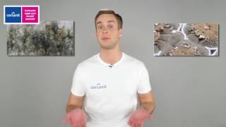 видео Сантехника  Cersanit (Польша) купить недорого в  Акванет.Ру