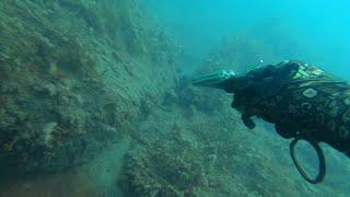 Горбылевая щель.  Подводная охота.