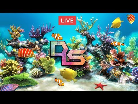 🔴Relaxing fish tank live fish aquarium24/7relaxing study chill sleep music meditation support DLS