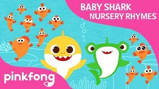 Download Video How Many? | Baby Shark Nursery Ryme | Pinkfong Songs for Children MP3 3GP MP4