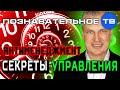 Антименеджмент: Секреты управления (Познавательное ТВ, Андрей Иванов)