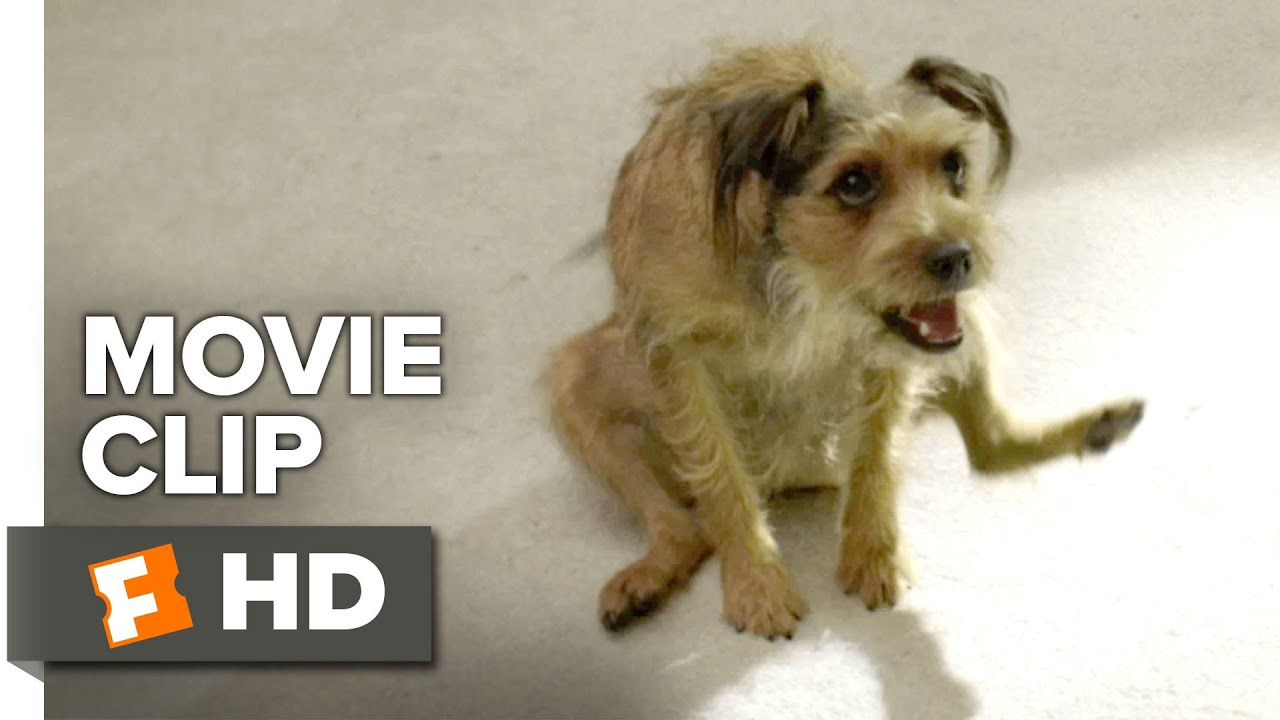 robodog official movie clip vacuuming the rug 2016