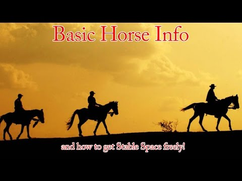 Black Desert Free Stable Space, Horse Training, and Breeding Info