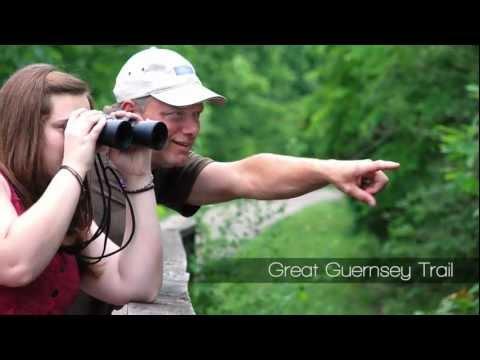 Let Your Spirit Roam Free in Cambridge/Guernsey County Ohio