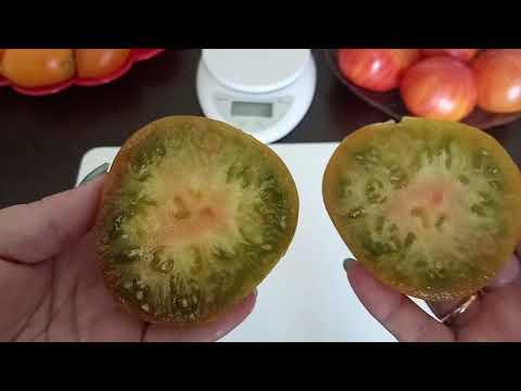 Обзор сортов желтых и зеленых томатов. 4 часть