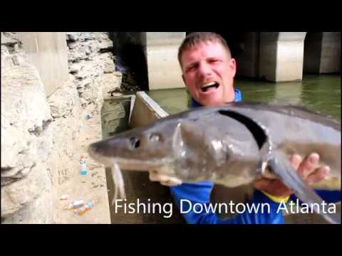 Fishing Downtown Atlanta (Mystery Catch)