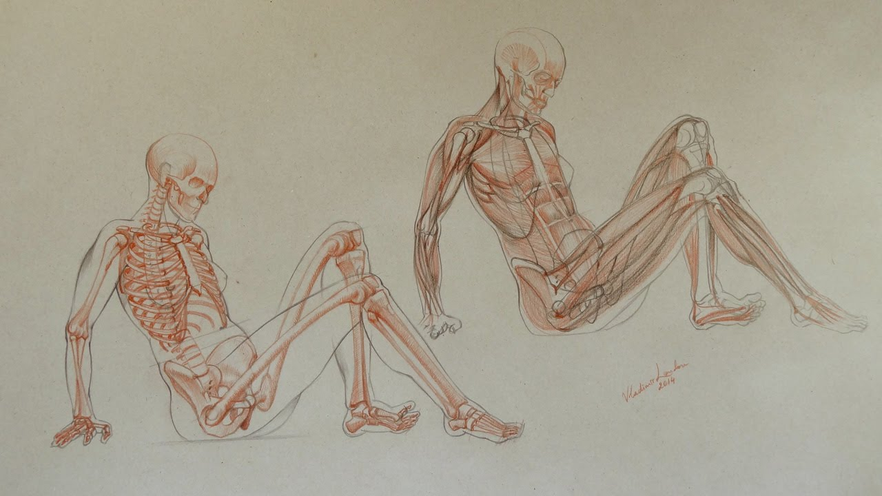 How to Draw Female Body - Anatomy Master Class - YouTube