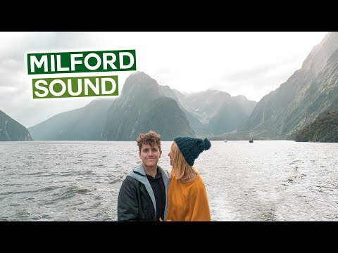 Milford Sound is BEAUTIFUL   The 8th Wonder of the World   Wild Kiwi