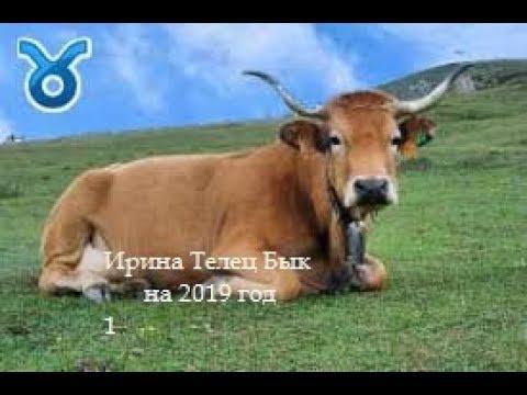Ирина Телец Бык на 2019 год от J Dzay