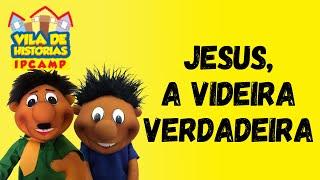Vila de Histórias - Jesus, a videira verdadeira