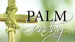 Vid #5 Palm Sunday 5 April 2020