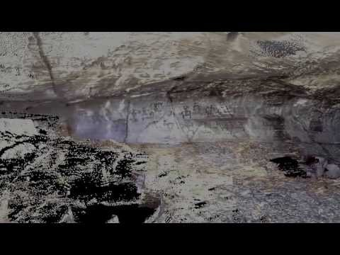 Using 3D terrestrial LiDAR to Document the Road Cut Cave Lava Tube and Petroglyphs in Hawaii