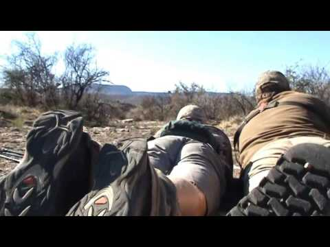 Hunting the Cape Buffalo