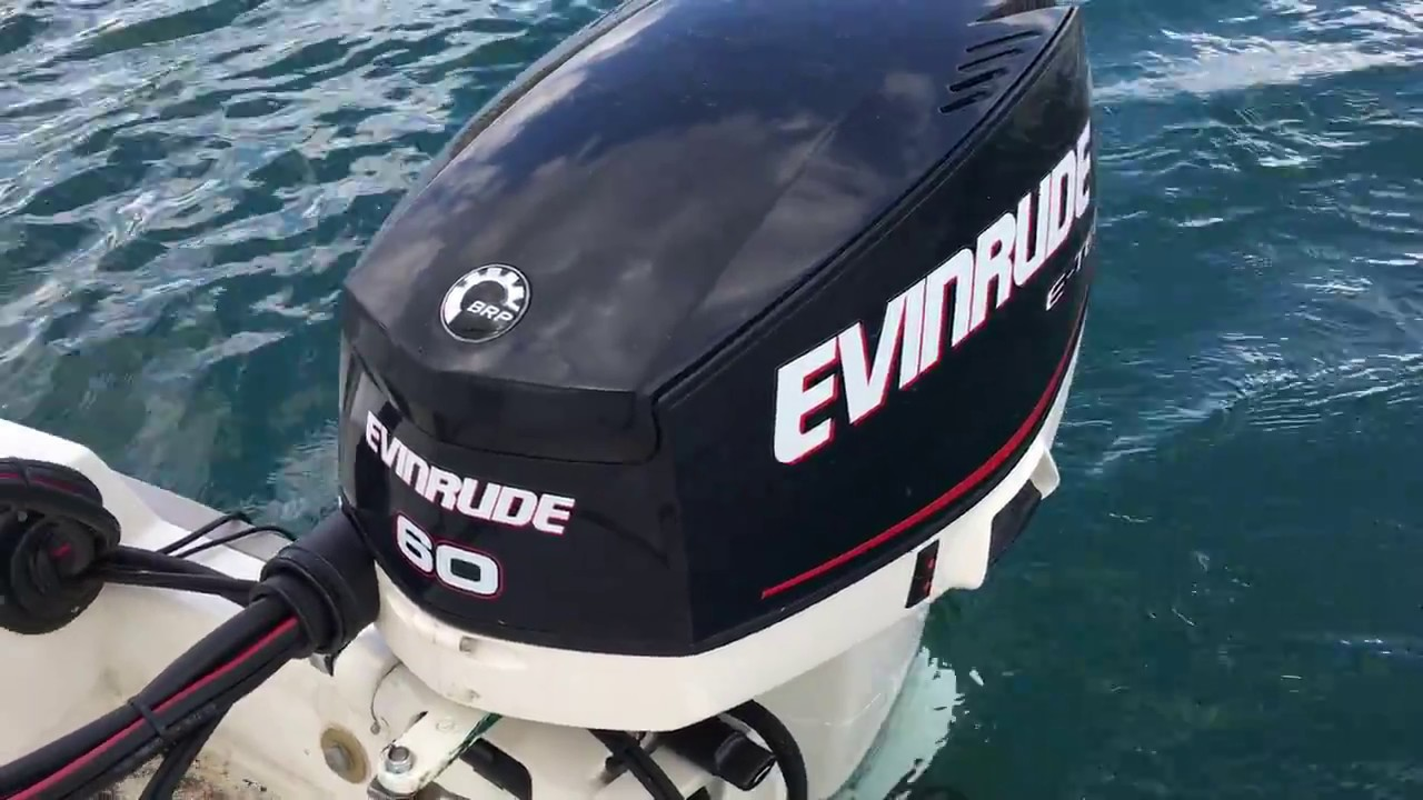 NEW 2017 Evinrude 60HP Etec with 17 Pitch Propeller with Cobra 495 Boat