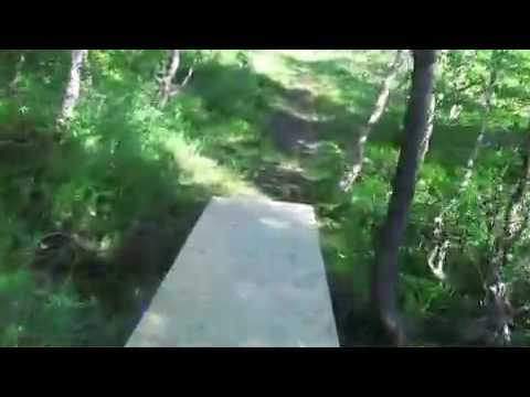 Tur langs stien ved Bursi gruve og Qvalekummen i Sulitjelma.