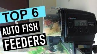 BEST 6: Auto Fish Feeders 2018