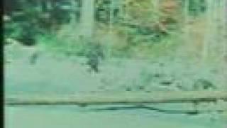 Patterson Bigfoot thumbnail