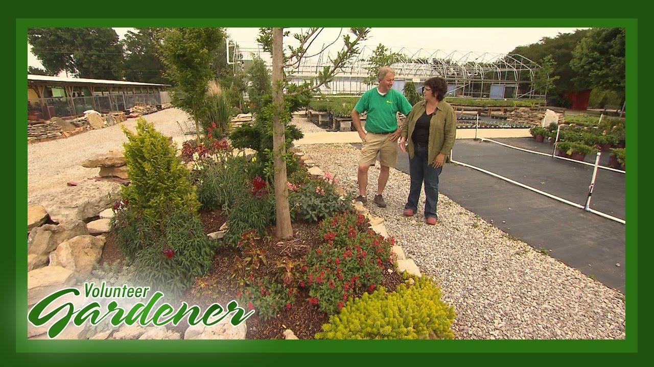 Garden Plan and Plants | Volunteer Gardener - YouTube