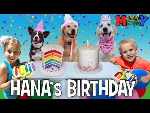 Puppy Birthday Party!!! 🐾🐶 || Mommy Monday