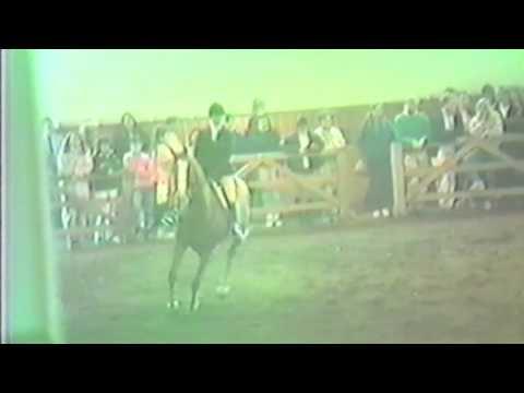 Brenda Tananbaum and Simon Says zone 1 and 2 Maclay regionals 1988