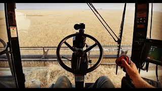 🔴Live! First Harvest Livestream 2018 - Welker Farms Inc