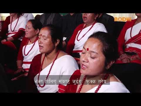 Bodhi TV :