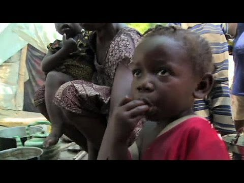 Urgent UN appeal amid Central African Republic food crisis