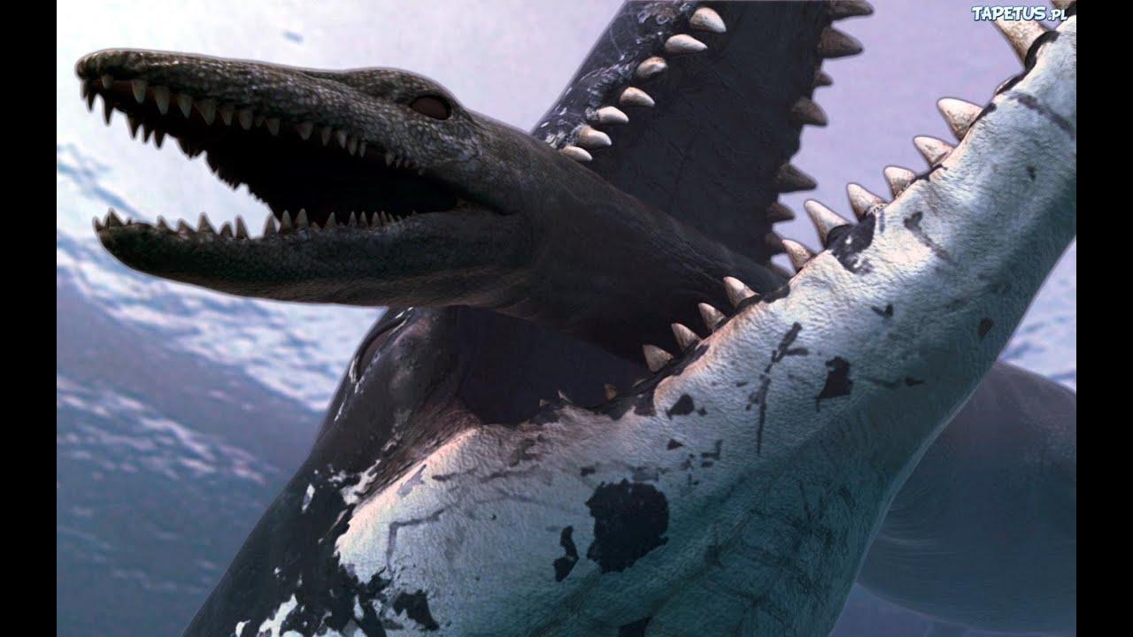 подработки фото самых больших хищников неисправен блок