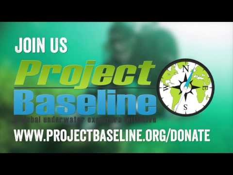 Project Baseline: Support