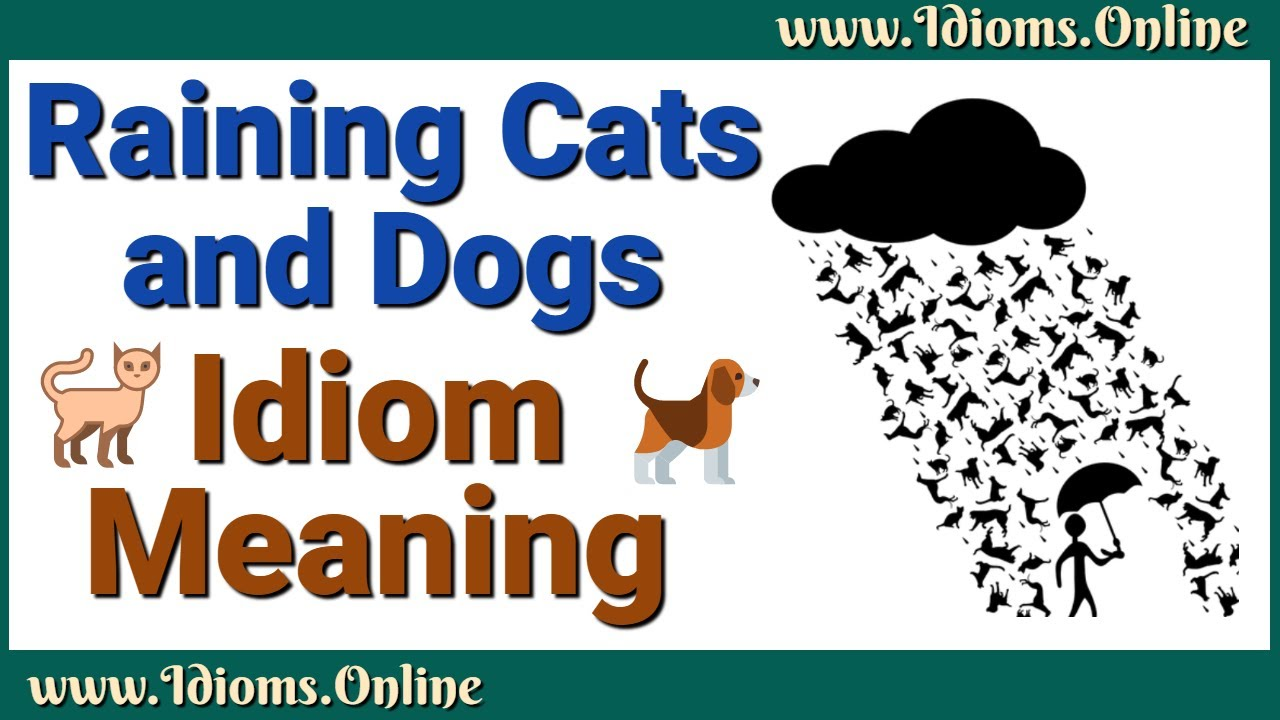 Raining Cats And Dogs Meaning Idiom Examples And Origin Youtube
