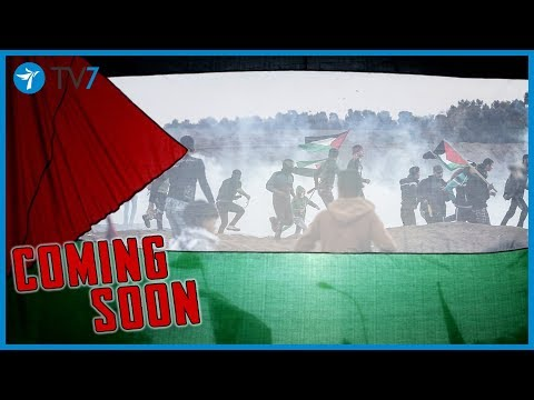 Coming soon...The Arab world and the Palestinians - JS 407 trailer