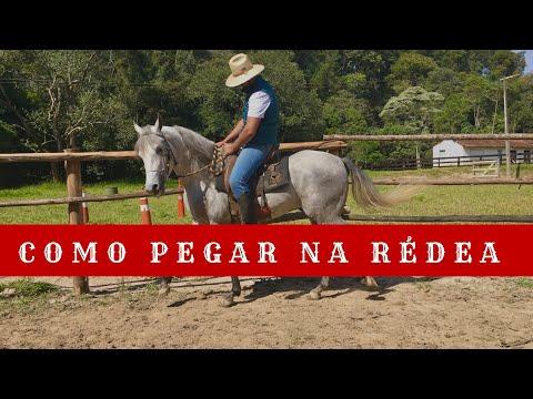 #TBT no Jeito de Cowboy| Pegada de Rédea