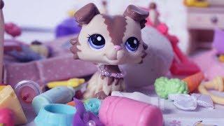 LPS Tidy Your Room! Littlest Pet Shop Skit