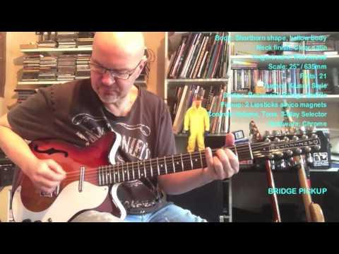 Roy Fulton - 12-String Danelectro Guitar - Cherry Sunburst