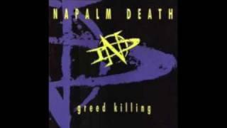 Napalm Death - Antibody