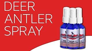 Deer Antler Spray Review (IGF-1 Extract): Does it work?