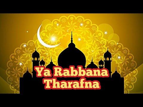 Lirik Ya Rabbana A Tharafna Nasyid Al Thaf Al Asyraf