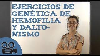 Ejercicios de genética de hemofilia y daltonismo